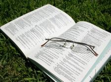 bible grass